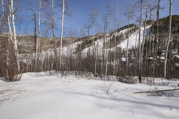 89 Elk Track Court Beaver Creek, CO - Image 12