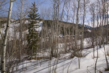 89 Elk Track Court Beaver Creek, CO - Image 13