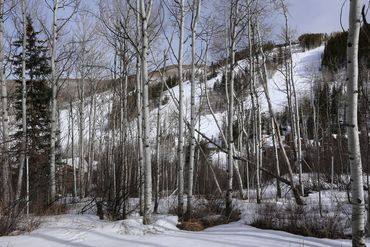 89 Elk Track Court Beaver Creek, CO - Image 16