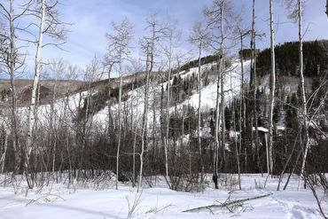 89 Elk Track Court Beaver Creek, CO - Image 17