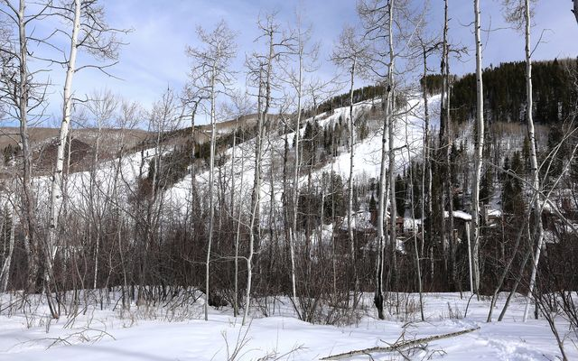 89 Elk Track Court - photo 16