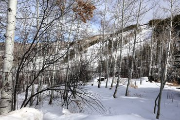 89 Elk Track Court Beaver Creek, CO - Image 18