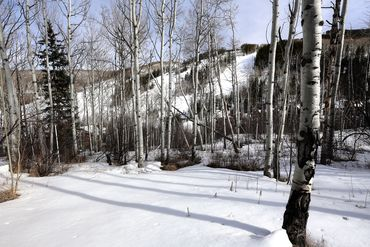 89 Elk Track Court Beaver Creek, CO - Image 24