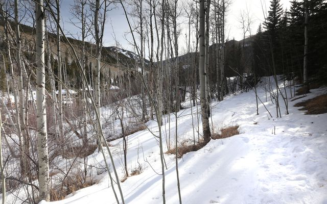 89 Elk Track Court - photo 25