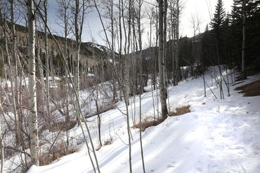 89 Elk Track Court Beaver Creek, CO - Image 26
