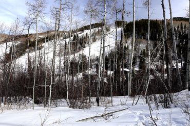 89 Elk Track Court Beaver Creek, CO - Image 29