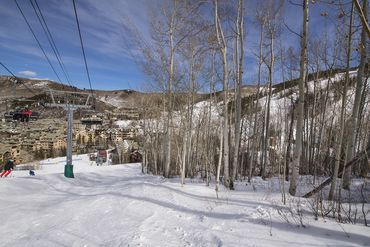 89 Elk Track Court Beaver Creek, CO - Image 6