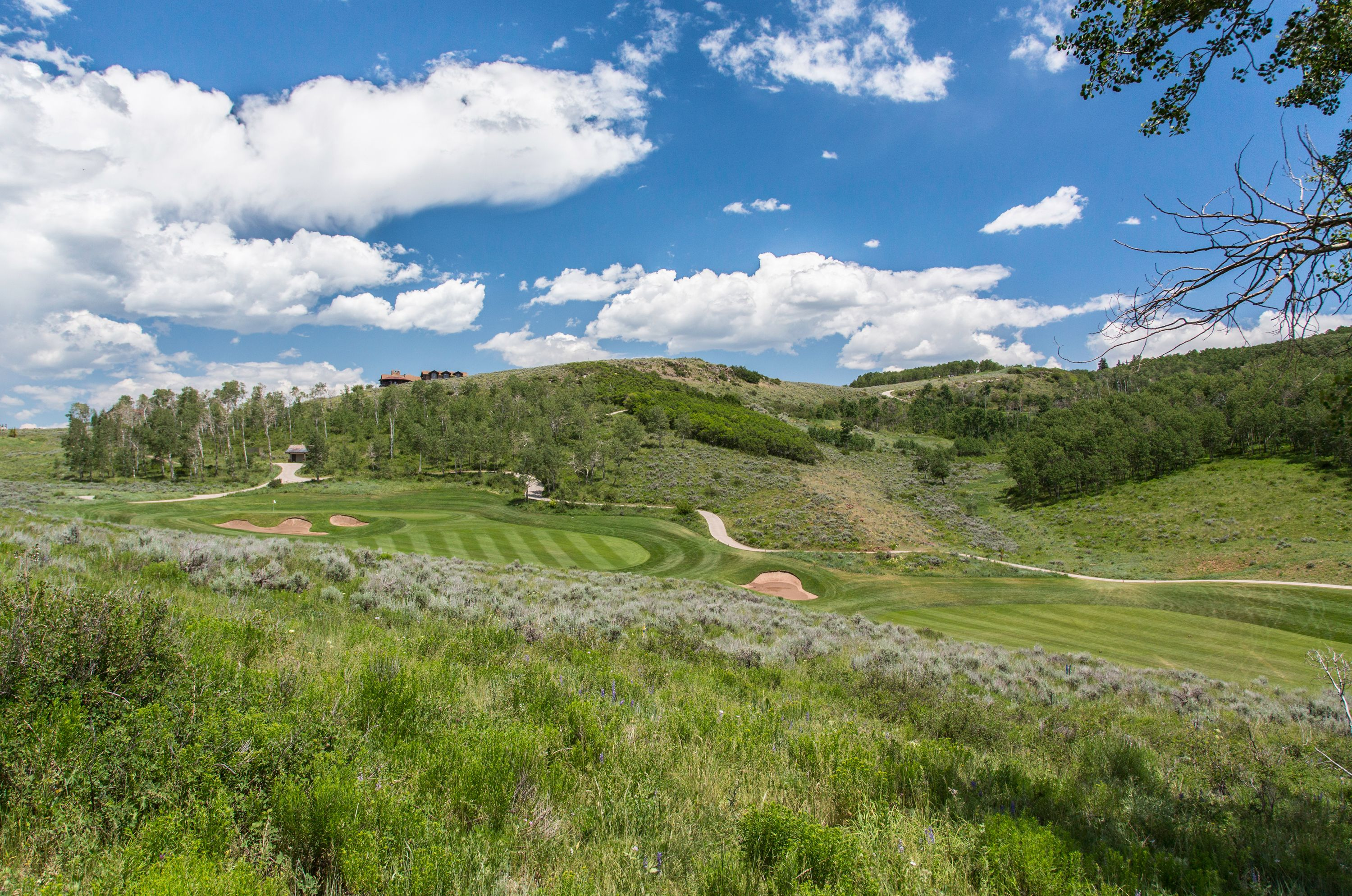 224 Golden Bear Drive Edwards, CO 81632