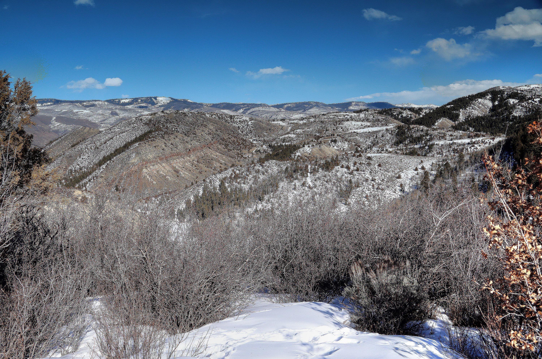610 Redtail Ridge Edwards, CO 81632