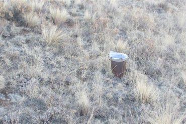 548 PRONGHORN DRIVE COMO, Colorado - Image 3