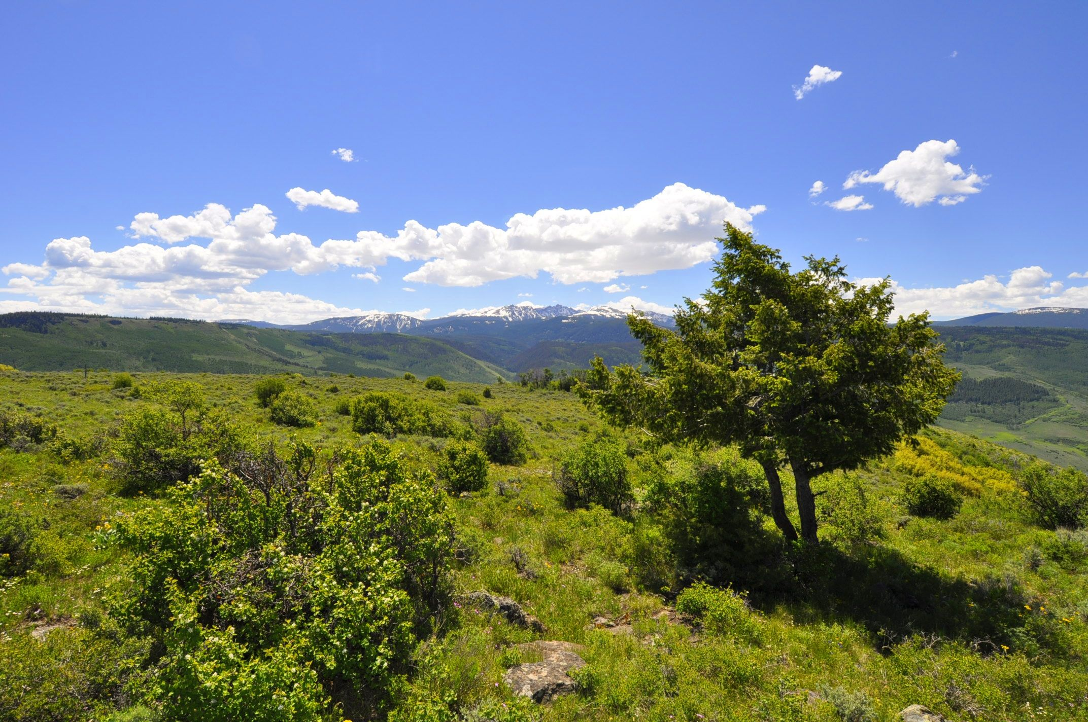 966 Webb Peak Edwards, CO 81632