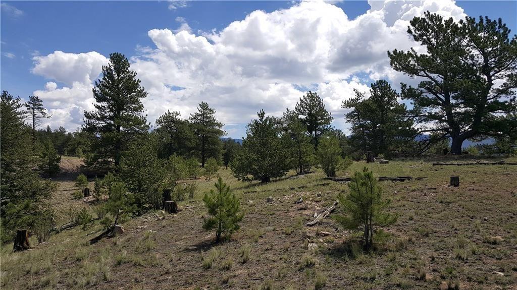 1838 OLYMPIC CIRCLE HARTSEL, Colorado 80449