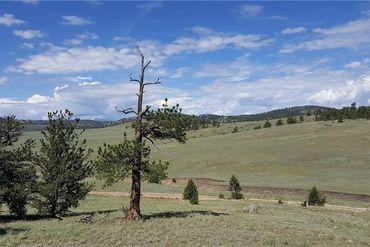 780 CATHY DRIVE HARTSEL, Colorado - Image 5