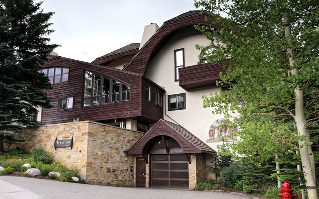 400 VAIL VALLEY DRIVE Photo 1