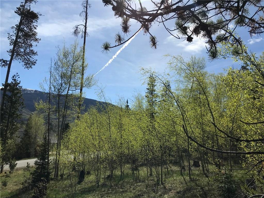 180 Easy Bend TRAIL SILVERTHORNE, Colorado 80498