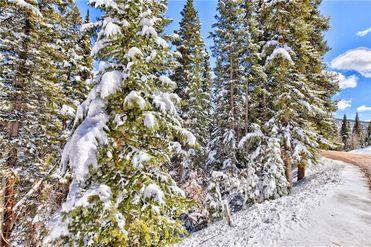 1452 QUARTZVILLE ROAD FAIRPLAY, Colorado 80440 - Image 1