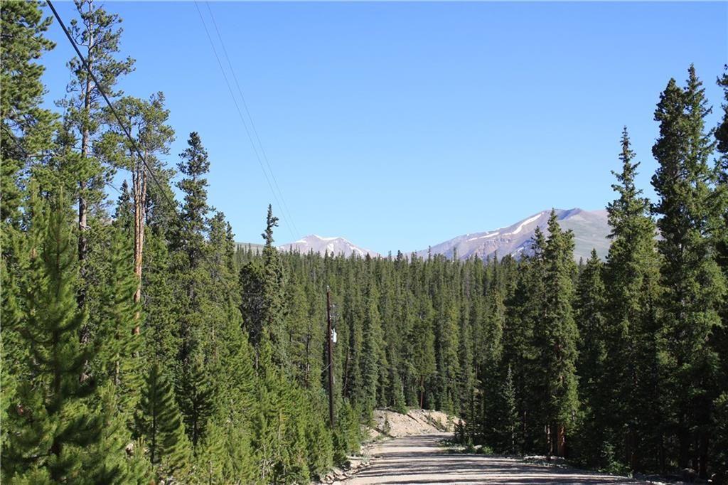 835 Bobcat LANE FAIRPLAY, Colorado 80440