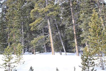 835 Bobcat LANE FAIRPLAY, Colorado - Image 12