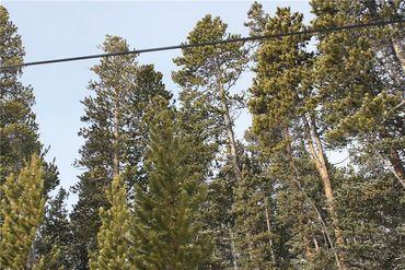 835 Bobcat LANE FAIRPLAY, Colorado - Image 14