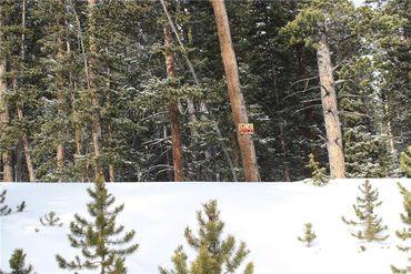 835 Bobcat LANE FAIRPLAY, Colorado - Image 15