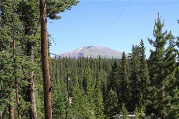 835 Bobcat LANE FAIRPLAY, Colorado - Image 3