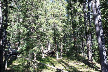 835 Bobcat LANE FAIRPLAY, Colorado - Image 4