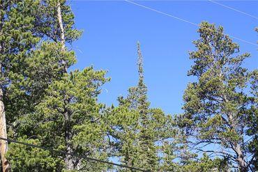 835 Bobcat LANE FAIRPLAY, Colorado - Image 5