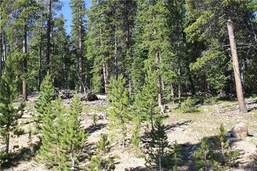 835 Bobcat LANE FAIRPLAY, Colorado - Image 6