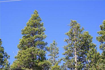 835 Bobcat LANE FAIRPLAY, Colorado - Image 7