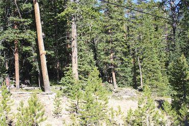 835 Bobcat LANE FAIRPLAY, Colorado - Image 8