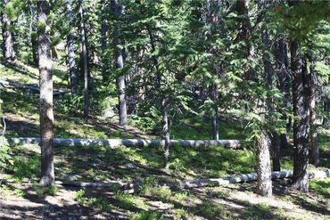 835 Bobcat LANE FAIRPLAY, Colorado - Image 9