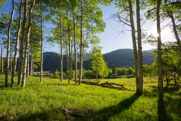 4191 Lake Creek Road E Edwards, CO - Image 15