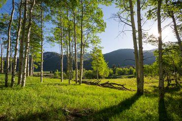 4191 Lake Creek Road E Edwards, CO - Image 15