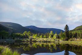 4191 Lake Creek Road E Edwards, CO 81632 - Image 17