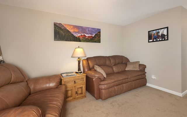 101 Saddle Ridge Drive # 101 - photo 23