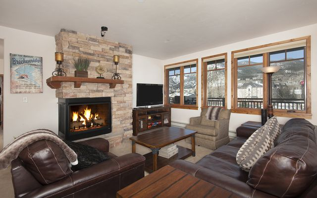 1101 9000 Divide ROAD # 310 FRISCO, Colorado 80443