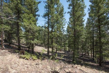 Lot 498 Redhill ROAD FAIRPLAY, Colorado - Image 26