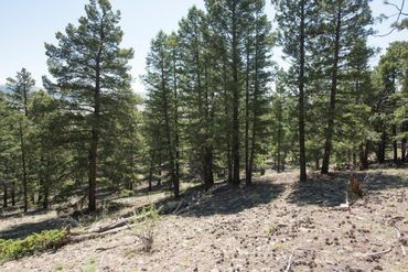 Lot 498 Redhill ROAD FAIRPLAY, Colorado - Image 18