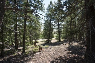 Lot 498 Redhill ROAD FAIRPLAY, Colorado - Image 21