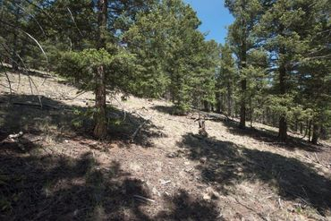 Lot 498 Redhill ROAD FAIRPLAY, Colorado - Image 23