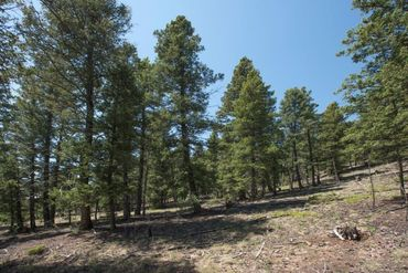 Lot 498 Redhill ROAD FAIRPLAY, Colorado - Image 24