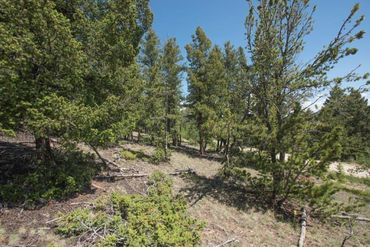 Lot 498 Redhill ROAD FAIRPLAY, Colorado - Image 4