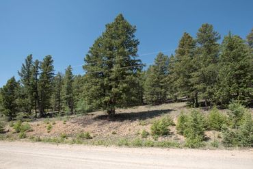 Lot 498 Redhill ROAD FAIRPLAY, Colorado - Image 6