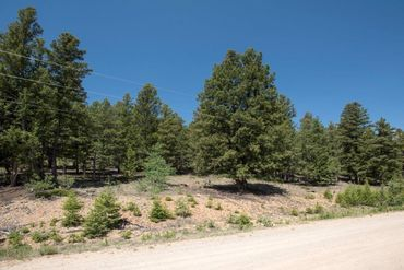 Lot 498 Redhill ROAD FAIRPLAY, Colorado - Image 9