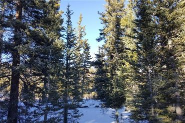 Lot 1189 GUYMARD ROAD FAIRPLAY, Colorado - Image 11