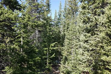 Lot 1189 GUYMARD ROAD FAIRPLAY, Colorado - Image 23