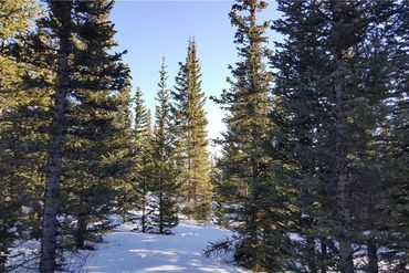Lot 1189 GUYMARD ROAD FAIRPLAY, Colorado - Image 10
