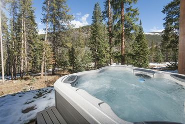 788 Preston WAY BRECKENRIDGE, Colorado - Image 25