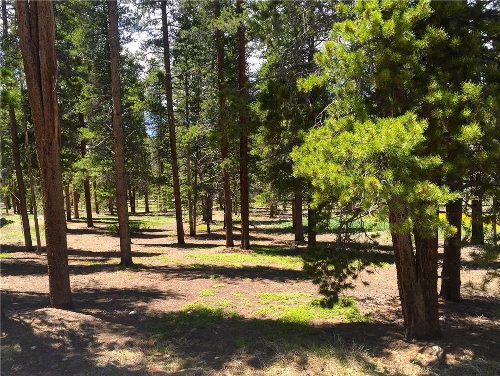 1660 Four Seasons BOULEVARD LEADVILLE, Colorado 80461