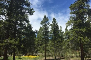 1660 Four Seasons BOULEVARD LEADVILLE, Colorado - Image 5